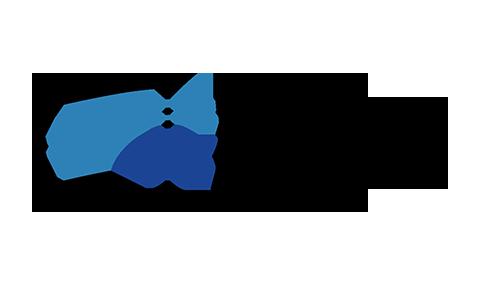 Logo_VistaVision